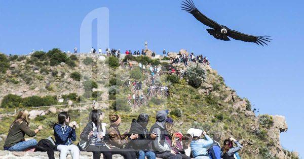 Arequipa e Canyon di Colca in 3 Giorni - Agenzia di Viaggi Iberoamerica
